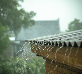 rainfact