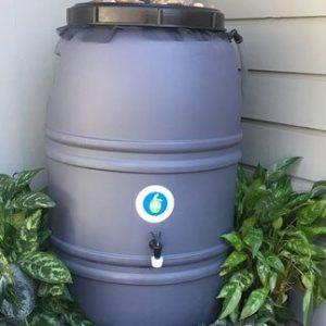 Unpainted Rain Barrels